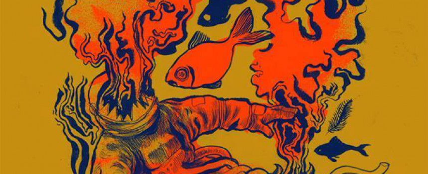 Opgelet! Zeldzame Astrosoniq show op Woolstock