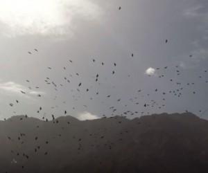 Clipprimeur: GOLD – The Controller, post-black metal brug tussen Franse zee en Marokkaanse bergen