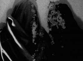 Albumreview: Fluisteraars – Luwte, een desolate trip met black metal, de bloedmaan en Absinth