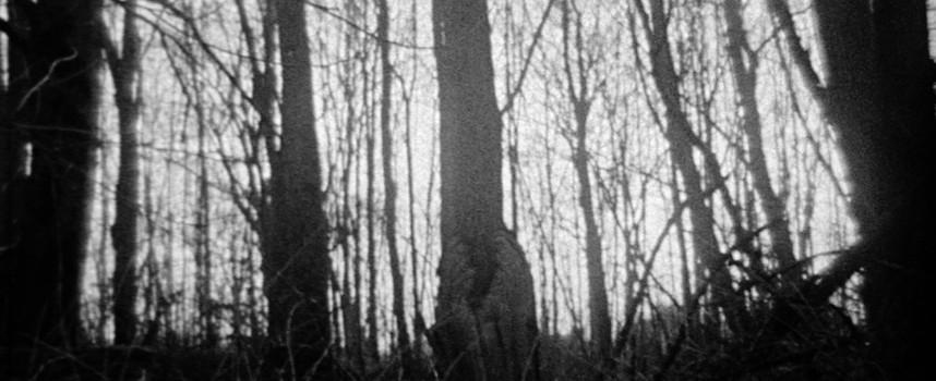 Melancholisch triprocken met het Antwerpse The Girl Who Cried Wolf