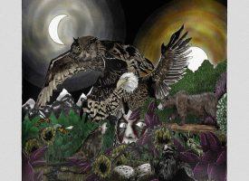 Albumreview: Herboren Avatar komt met sprookje