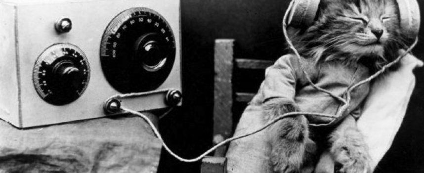 NMTH op Pinguin Radio: Nieuwe Muziek #12