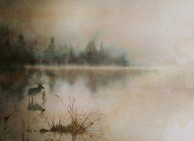 Albumprimeur en -review: Op melancholisch avontuur met Sólstafir's Berdreyminn