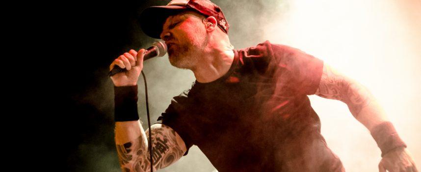 Brok vaderlandse punkhistorie in Bibelot met I Against I en Stavast
