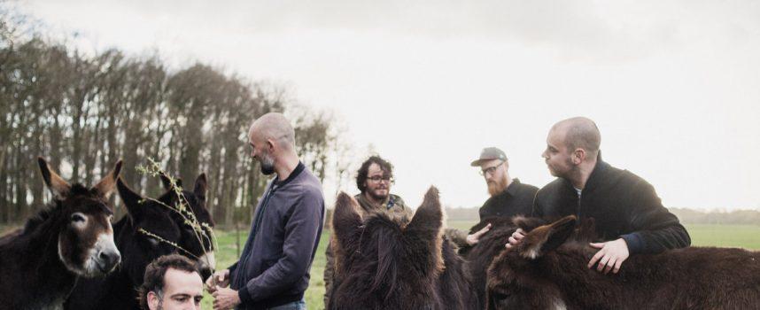 Video: Lost Bears gepeperde uitnodiging voor het laatste oordeel