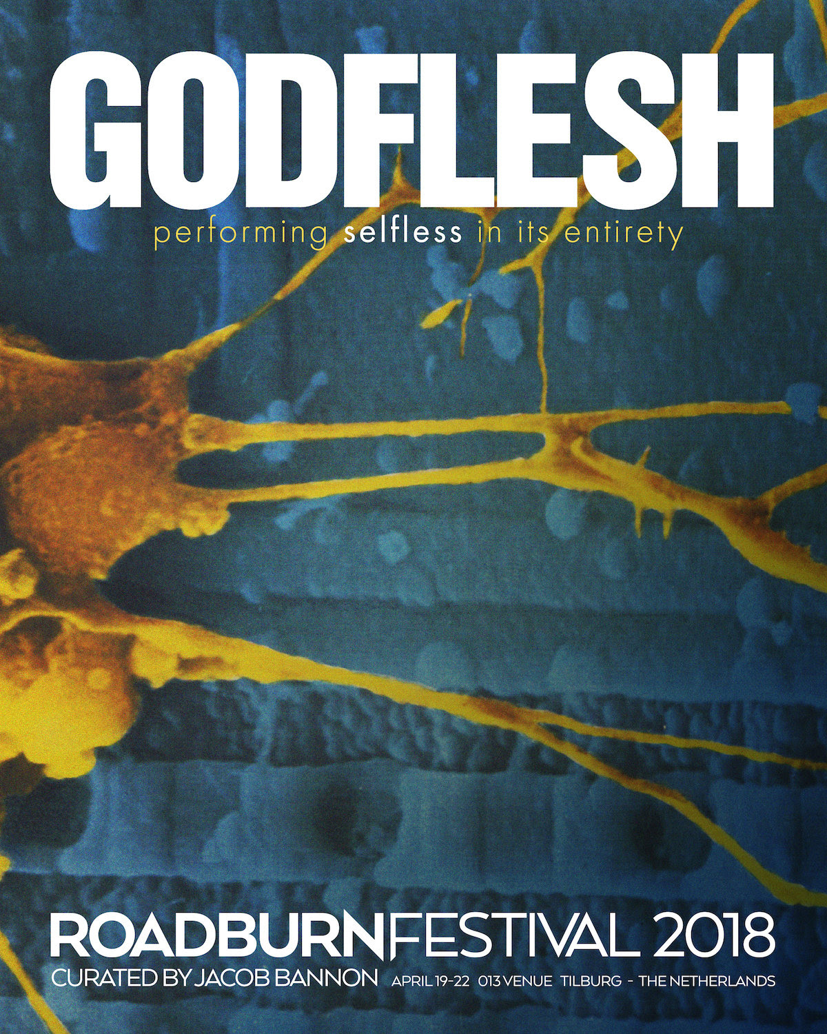 Godflesh Roadburn