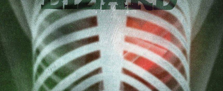 Nieuwe muziek van Green Lizard dat lachend op tour gaat, ook op maandag