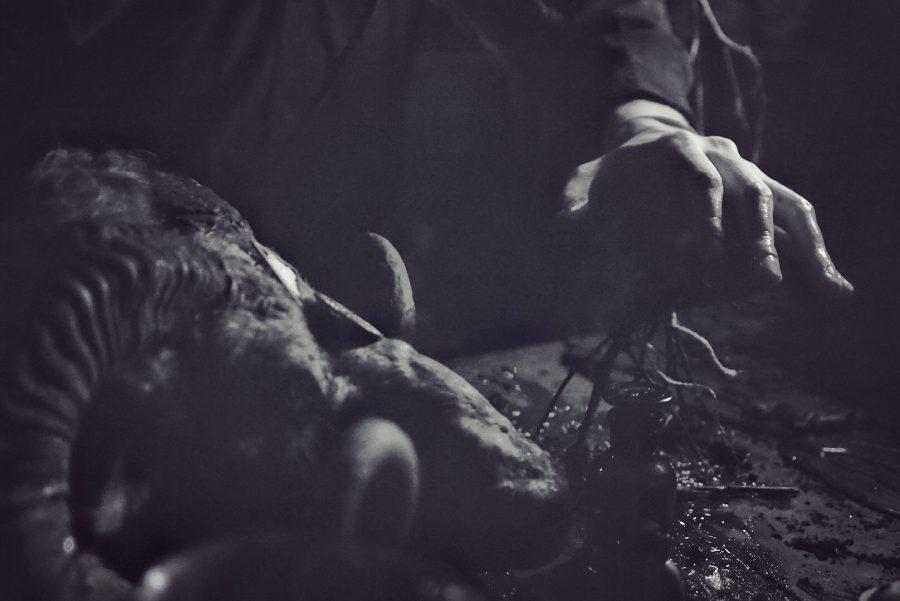 NYIÞ op Oration door Serpents Lens Photography