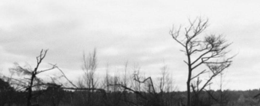 Sher Khan: instrumentale post-metal en stonertreat uit Leuven