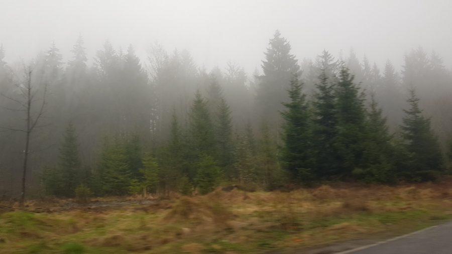 Tsjechië in de mist