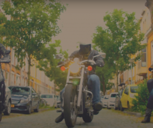 Video van de Week: The Scorpion Trail gaat van deur tot deur met Heartbreak Lemonade
