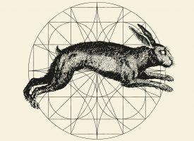Albumreview: Alkerdeel – Slonk