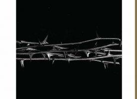 Albumreview: Amenra – De Doorn